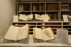 Rare books on display in the Reading Room. Photo:RBG Kew.