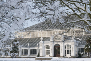 Temperate House in Winter. Photo:RBG Kew.