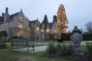 Christmas at Wakehurst Place. Photo:RBG Kew.