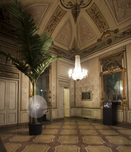 Ciclonic Palm Tree, 2004 palma Archontophoenix, ventilatore, motore / Archontophoenix palm tree, fan, motor 5 x ø 1,5 m © Allora & Calzadilla Courtesy Allora & Calzadilla; Galerie Chantal Crousel, Paris; Ichem Bouzenad, Brusselles allestimento a Palazzo Cusani, Milano / installation view at Palazzo Cusani, Milano photo: Marco De Scalzi