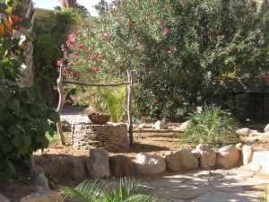 Sacred Desert Well in Kibbutz Ketura