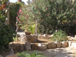 Sacred Desert Well in Kibbutz Ketura