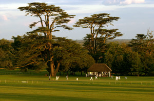 Goodwood Cricket