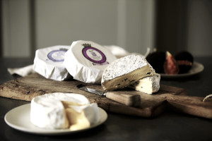 Goodwood Organic Cheese by Stephen Hayward