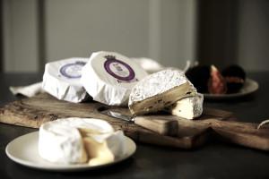 Goodwood Organic Cheese by Stephen Hayward