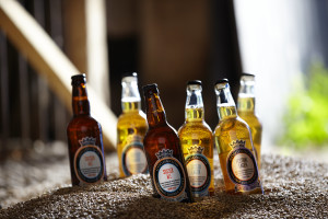Goodwood Organic beer by Stephen Hayward