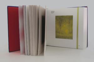 benetton-171-copy