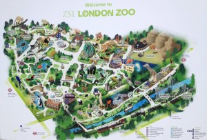 Map of London Zoo.