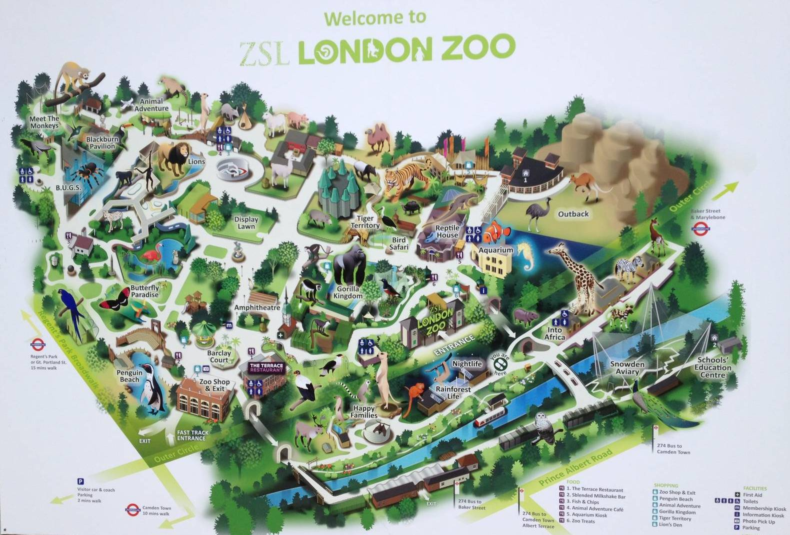 london zoo night time christmas