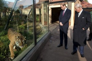 Royal visit to Zoological Society of London