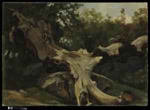 Antoine-Xavier-Gabriel de Gazeau (1801-1881), Uprooted Tree, Olevano, 1833, Oil on paper, mounted to board, Thaw Collection, Jointly Owned by the Metropolitan Museum of Art and the Morgan Library & Museum, Gift of Eugene V. Thaw.