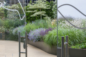 View through glass doors, Salvia nemorosa 'Caradonna', Nepeta racemosa 'Walker's Low', Gaura lindheimeri, eryngium and Cornus controversa 'Variegata' in powder-coated steel raised bed